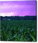 Cornfield Landscapes Purple Rain Canvas Print