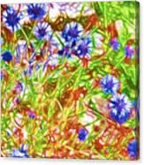 Cornfield With Cornflowers Canvas Print