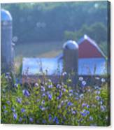 Cornflower And Barn Canvas Print