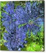 Cornflower Canvas Print