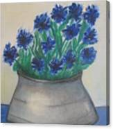 Cornflower Canvas Print