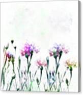 Cornflowers Watercolor  Canvas Print