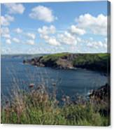 Cornwall Coast 4 Canvas Print