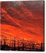 Corral Sunset Canvas Print
