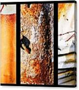 Corrugated Iron Triptych #10 Canvas Print