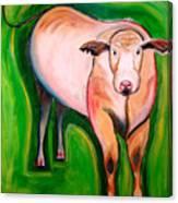 Cosmic Cow Canvas Print