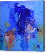 Cosmic Display Canvas Print