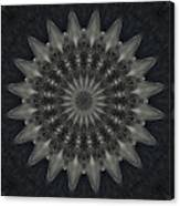 Cosmic Mandala  Canvas Print