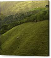 Costa Rica Pasture Canvas Print