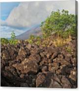 Costa Rica Volcanic Rock II Canvas Print