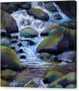 Costa Rican Stream Canvas Print