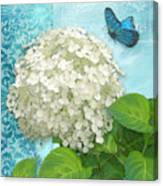 Cottage Garden White Hydrangea With Blue Butterfly Canvas Print