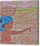 Cotton Balls Canvas Print