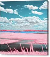 Cotton Candy Marsh Canvas Print