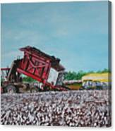 Cotton Pickin' Business Canvas Print
