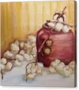 Cotton Plant Canvas Print