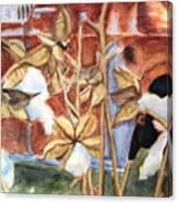 Cotton Truck Canvas Print