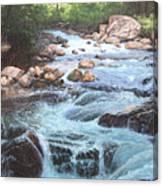 Cotton Wood Creek #4 Canvas Print