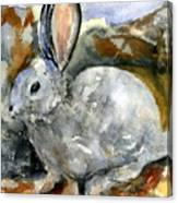 Cottontail In Camouflage Canvas Print