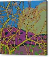 Cottonwood Number 4 Canvas Print