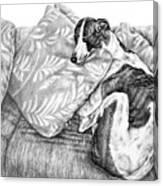 Couch Potato Greyhound Dog Print Canvas Print
