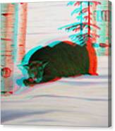 Cougar - Use Red-cyan 3d Glasses Canvas Print