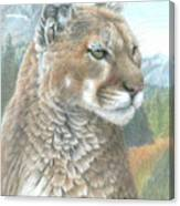 Cougar 2 Canvas Print