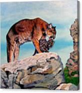 Cougar and Cub Canvas Print