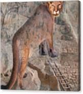 Cougar Rocks, Southwest Mountain Lion Canvas Print