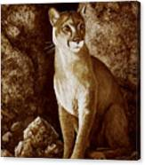 Cougar Wait Until Dark  Canvas Print