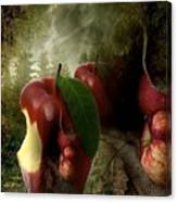 Country Apple 2 Canvas Print