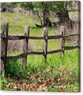 Country Fence Canvas Print