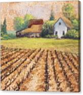 Country Harvest Canvas Print