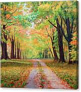 Country Lane - A Walk In Autumn Canvas Print