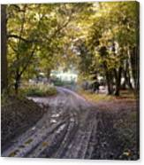 Country Lane In Autumn 4 Canvas Print