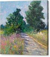 Country Path With Sunflowers Canvas Print