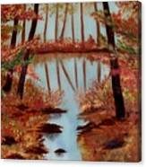 Country Reflections Canvas Print