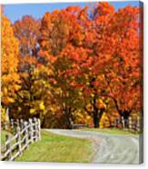 Country Road Autumn Canvas Print