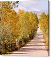 Country Road Autumn Fall Foliage View Of The Twin Peaks Canvas Print