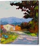 Country Road - Tuscany Canvas Print