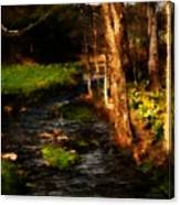 Country Stream Canvas Print