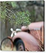 Country Truck Canvas Print