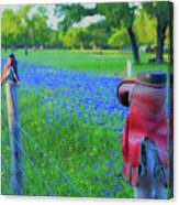 Country Western Blue Bonnets Canvas Print