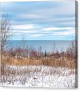 Country Winter 16 Canvas Print