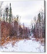 Country Winter 6 Canvas Print