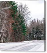 Country Winter 9 Canvas Print