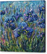 Countryside Irises Oil Painting With Palette Knife Canvas Print