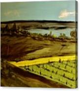 countryside/VINEYARD Canvas Print