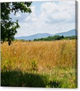 Countryside Of Italy 2 Canvas Print