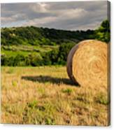 Countryside Of Italy 3 Canvas Print